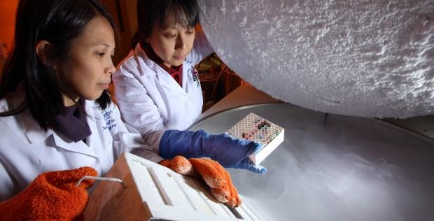 Pharmacists' Investigational Drug Services Aid Ebola Response